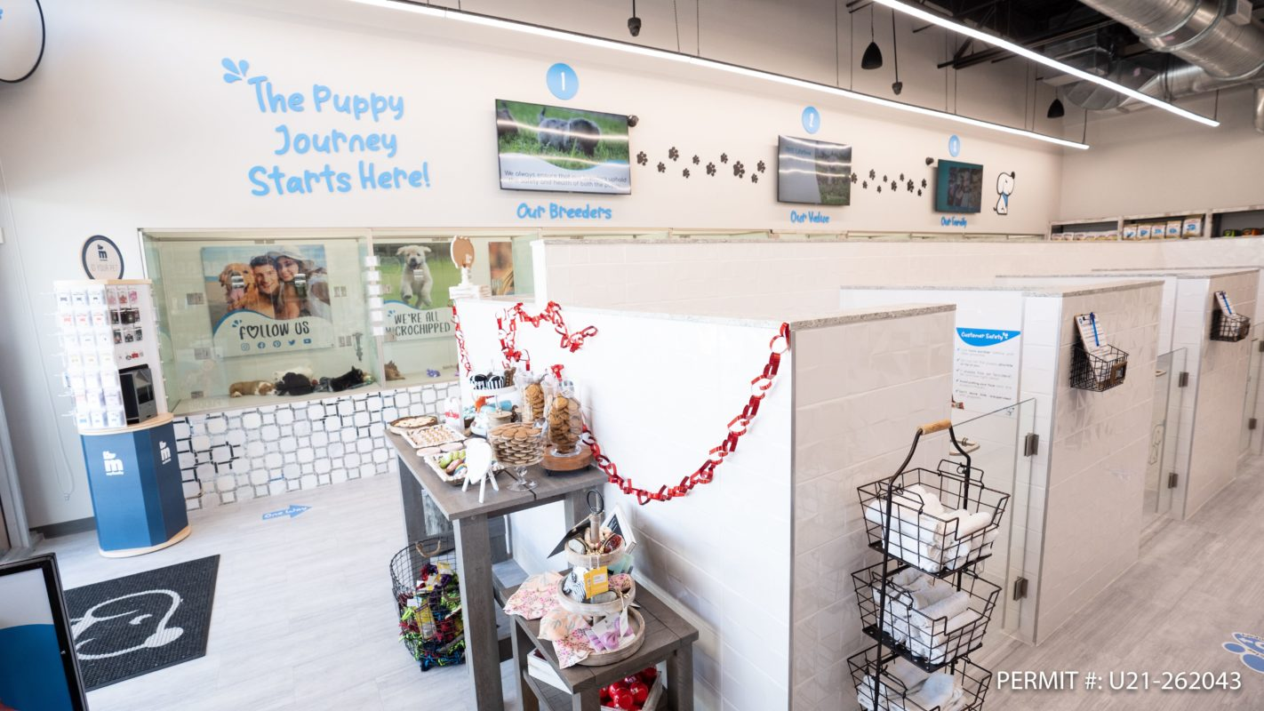 Puppy Buddy Celebrates Grand Opening